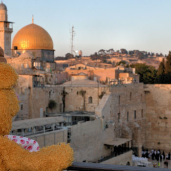 Fozzie in Jerusalem