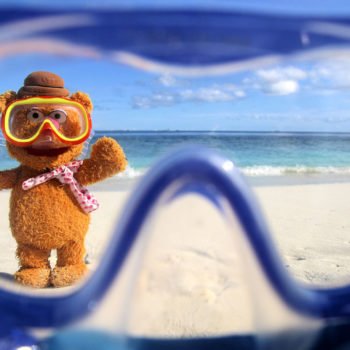 Fozzie in the Maldives