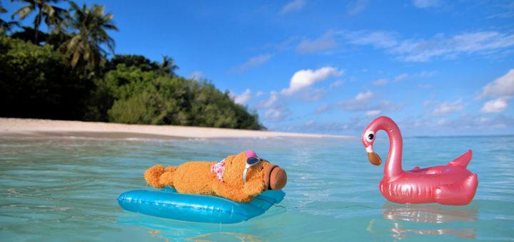 Fozzie in the Maldives