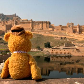 Fozzie in Jaipur