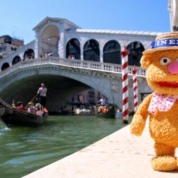 Fozzie in Venice